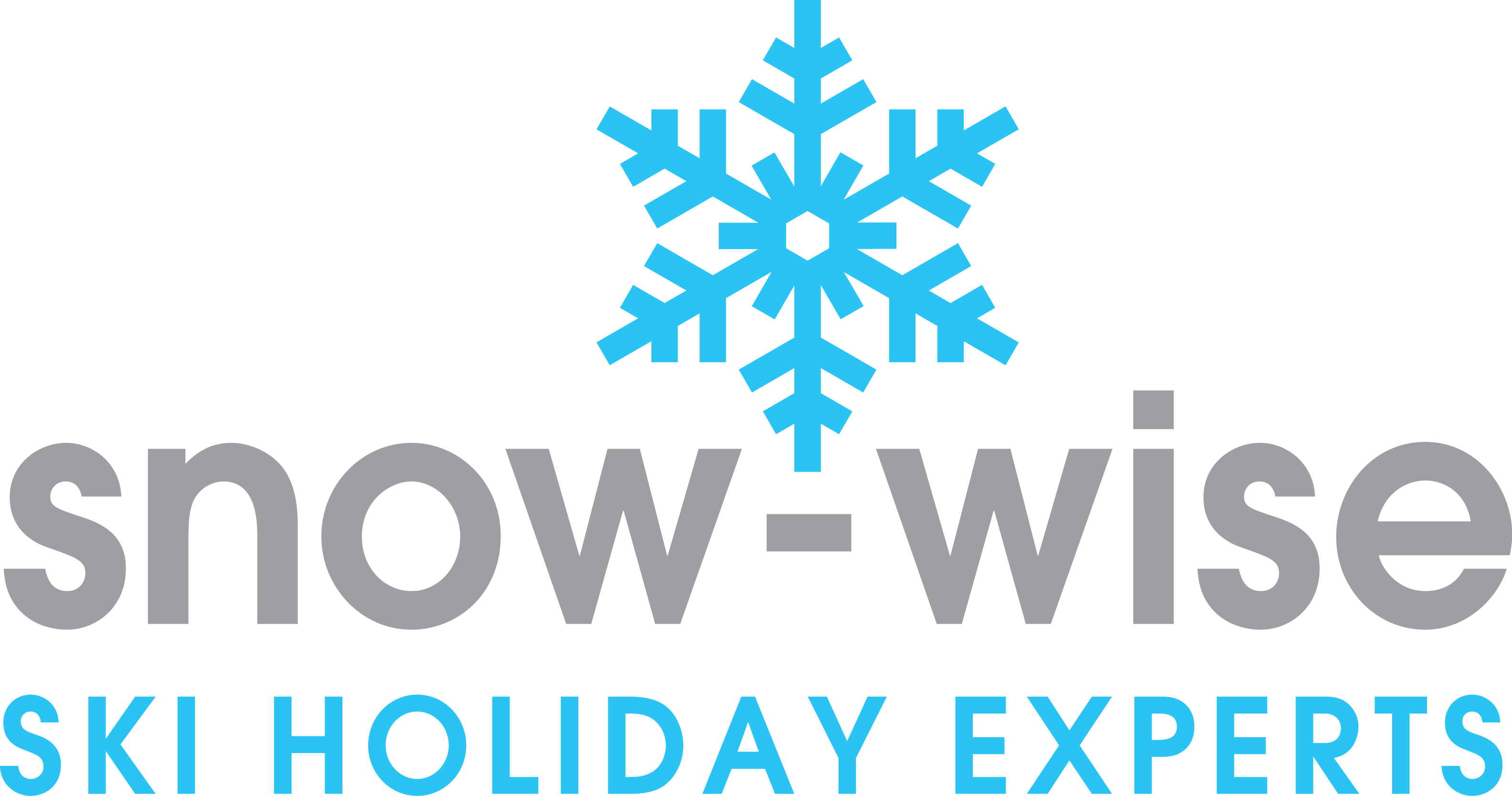 Snow Wise logo